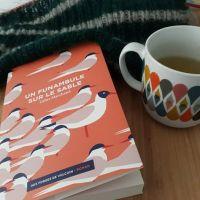 Un funambule sur le sable, Gilles Marchand ~ Rentrée littéraire 2017