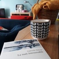 La nuit introuvable, Gabrielle Tuloup ~ rentrée littéraire hiver 2018