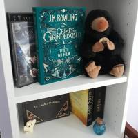 Un dimanche avec... Les animaux fantastiques #2 Les crimes de Grindelwald, JK Rowling
